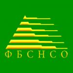 Итоги юношеского первенства НСО по бильярдному спорту «Свободная пирамида»