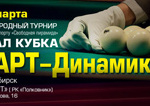 start-dinamika-final-2013-250